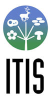 Integrated Taxonomic Information System (ITIS) Logo
